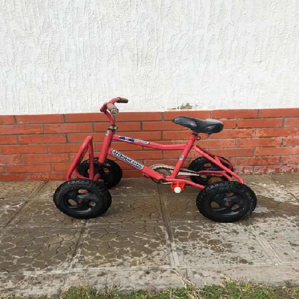 Triciclo/cuatriciclo infantil