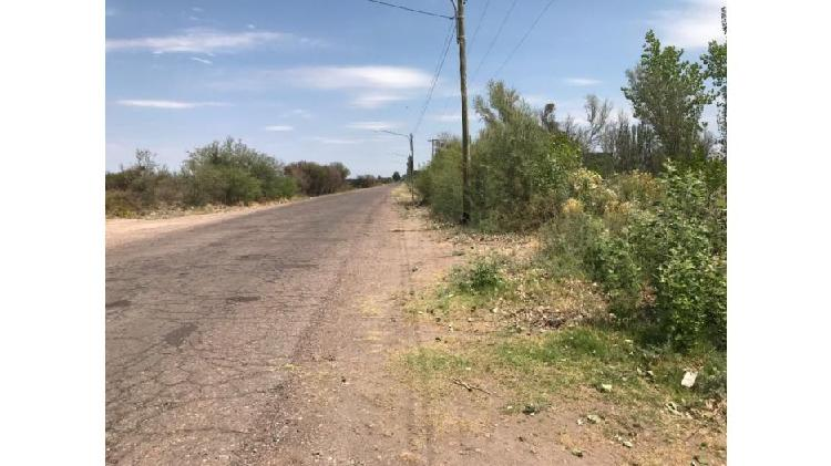 Venta de finca 24 hectáreas en la central - rivadavia -