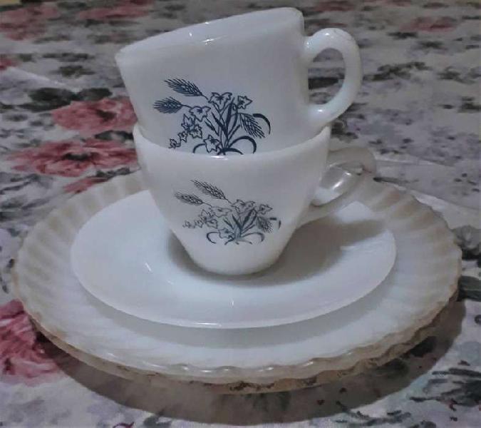 Lote 5 pz tazas y platos rigolleau y rigopal floreado
