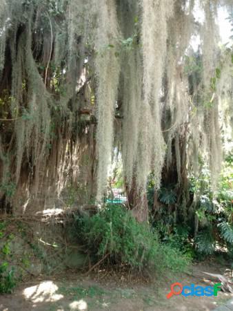 Al frente se encuentra una de las dos propiedades, desarrollada en dos plantas, con jardín y añosa arboleda