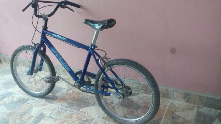 Bicicleta niño rodado 20 excelente