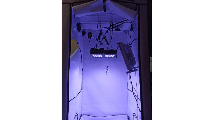 Kit cultivo indoor interior completo premium. recibo