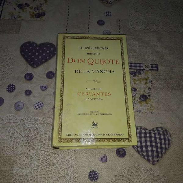Don quijote de la mancha-el ingenioso hidalgo