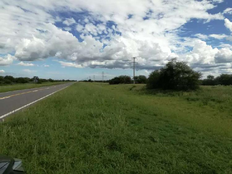 Vendo 5 hectáreas ruta 146. 30 min.de san luis
