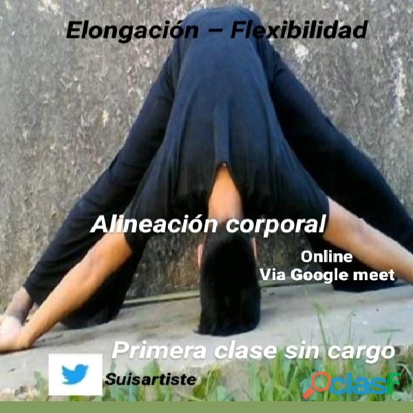 Sesiones de elongación Flexibilidad con alineanción corporal Online.