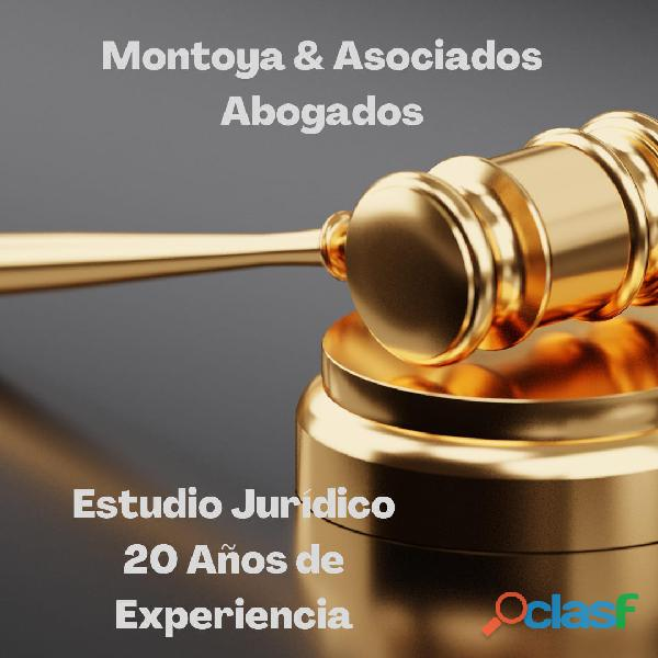 Abogado Zona Norte   Civil y Comercial   Laboral   Familia y Penalista