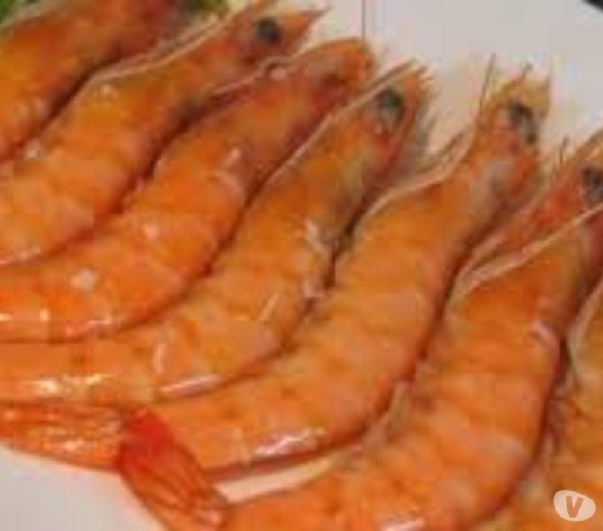 Envio entrega a domicilio pescados y mariscos alta cordoba