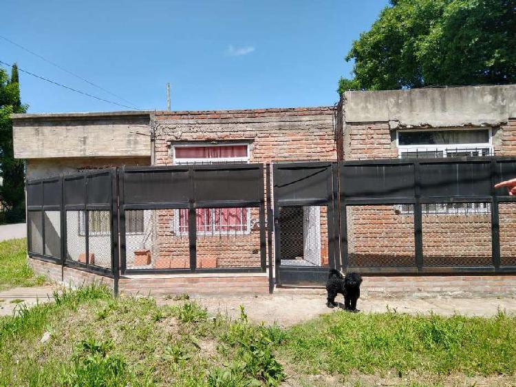 Paso del rey - barrio zapiola - casa a dos cuadras de calle