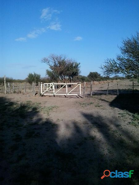 Vendo campo en san luis ganadero