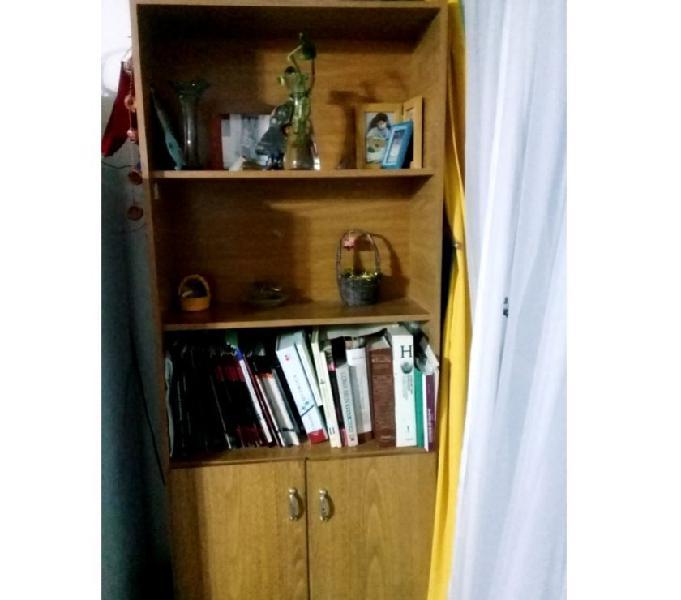 Biblioteca con puertas