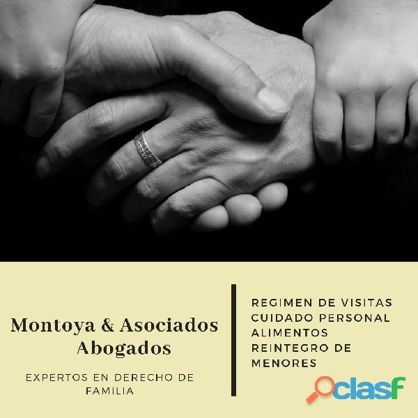 Abogados Especialistas en Familia   Alimentos   Divorcios   División de Bienes   Violencia