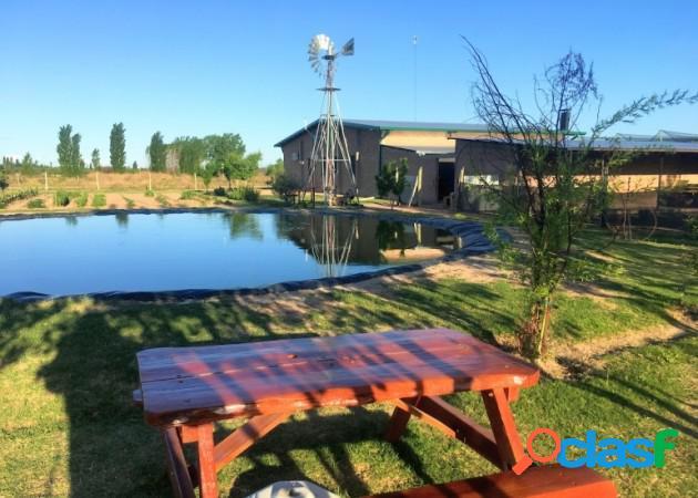 Hermosa casa con 1 hectareas terreno, granja, laguna, galpón.