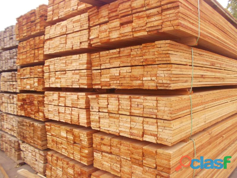 Vendo maderas eucailptus pino puntales tablas por equipo